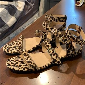 J Crew Leopard Calf Hair Buckled Gladiator Sandal